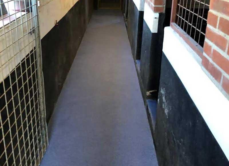 Krasbestendige vloer voor hondenpension Oud-dijk